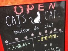 大分市今津留に「CAT'S CAFE maison de chat」という大規模な猫カフェがオープンしてる!