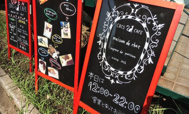 大分市舞鶴 今都留 猫カフェ