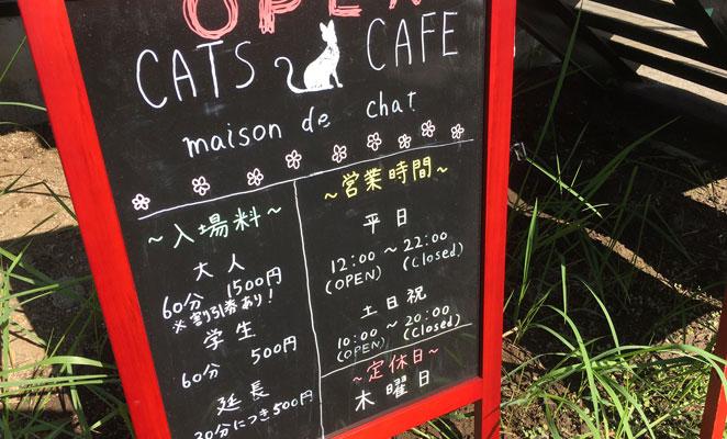 大分市 猫カフェ メニュー画像