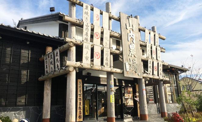 坂ノ市 刺身 居酒屋